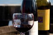 Warm Weather Wines: 4 Varietals for Spring