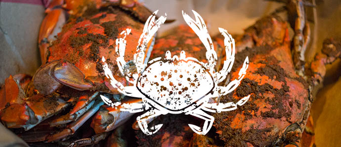 B&O American Brasserie Annual Crab Bash, Aug 7