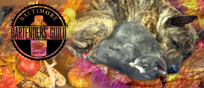 Baltimore Bartenders' Guild Serves Up Pet-Tails for BARCS