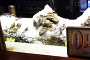 Wine Bar | Drinking and Slurping: Baltimore's Best Oyster Bars
