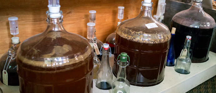 Move Over Kombucha, Kefir Beer Could Be the Next Big Thing in Fermentation