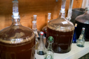 Craft Beer Baltimore | Move Over Kombucha, Kefir Beer Could Be the Next Big Thing in Fermentation | Drink Baltimore