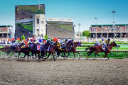 Wine Bar | Where to Watch the 2017 Kentucky Derby in Baltimore